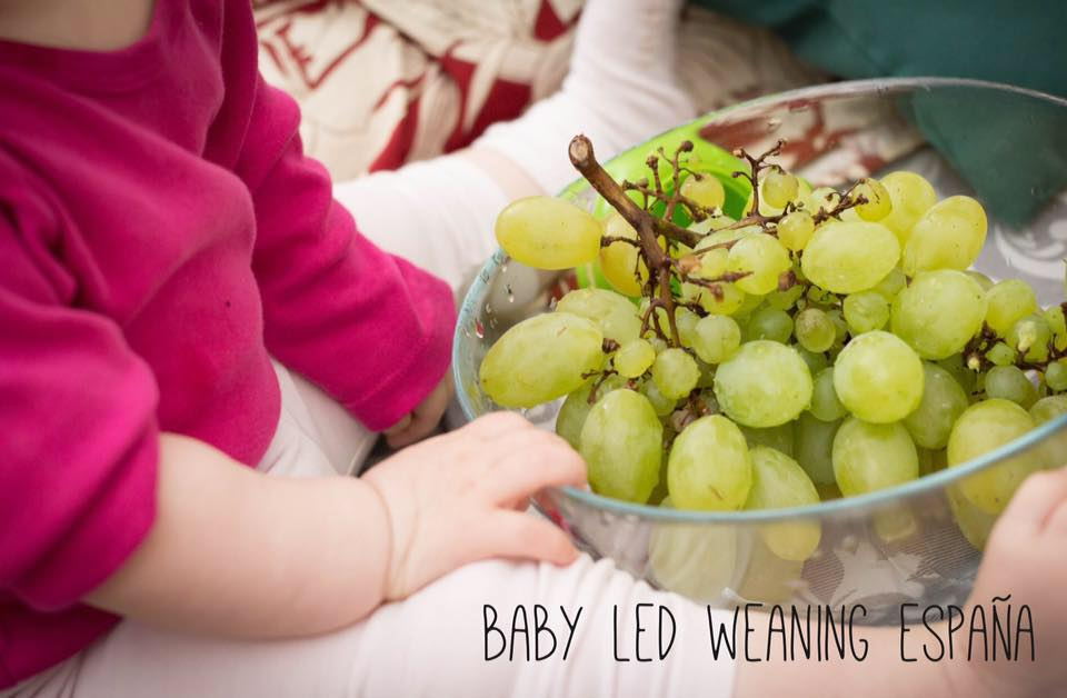 natural wean baby led weaning