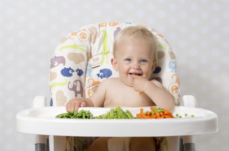 faq baby led weaning preguntas frecuentes