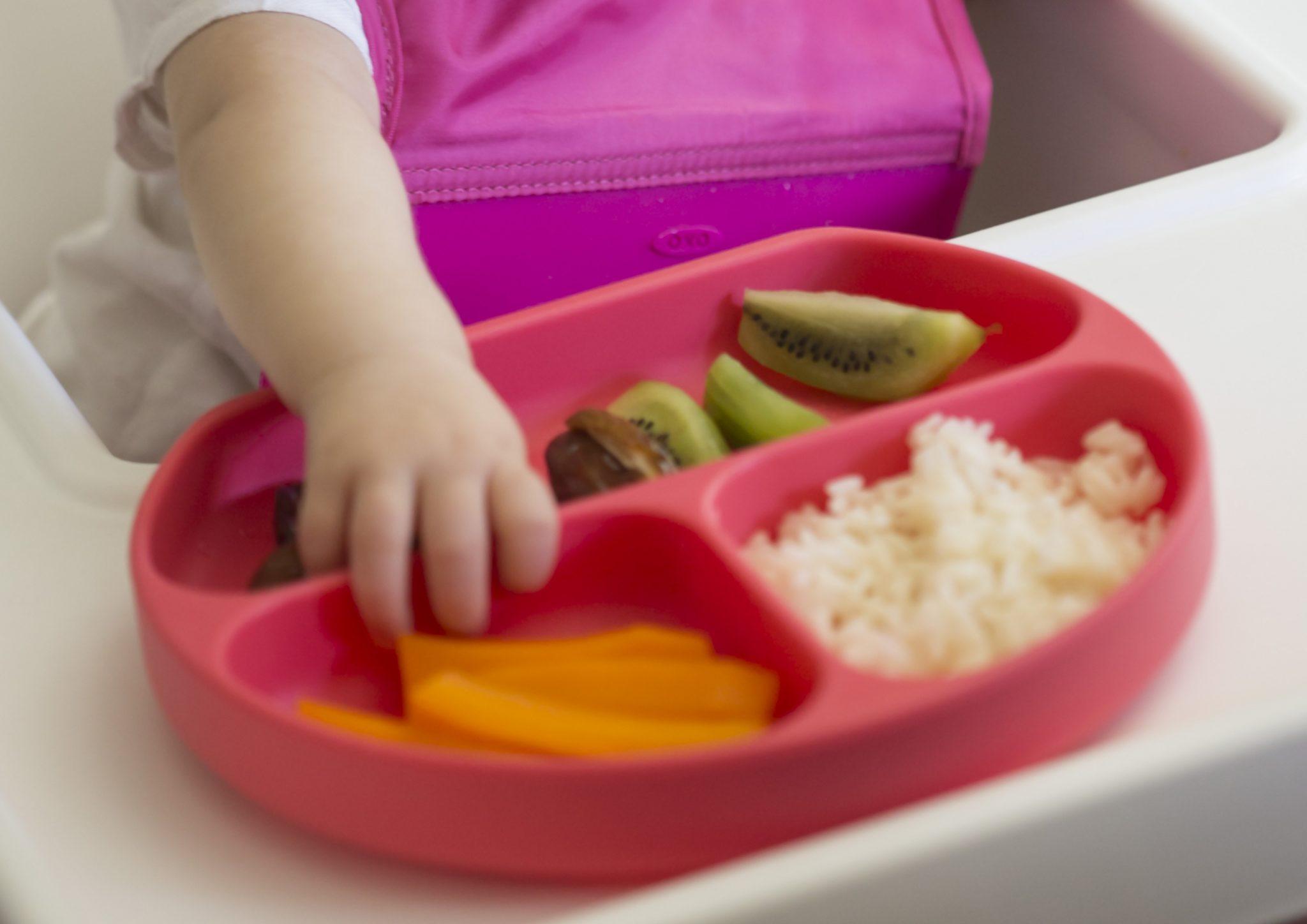 introducción de alimentos bebé